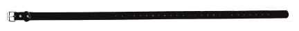 Sangle collier de dressage pour chien noire 59cm