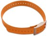 Sangle orange mat pour collier de dressage